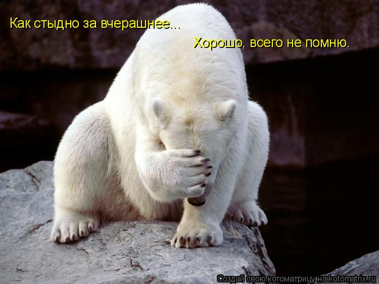 http://kotomatrix.ru/images/lolz/2010/03/14/514416.jpg