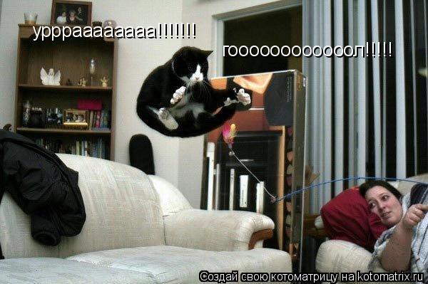Котоматрица: уррраааааааа!!!!!!! гоооооооооооол!!!!!