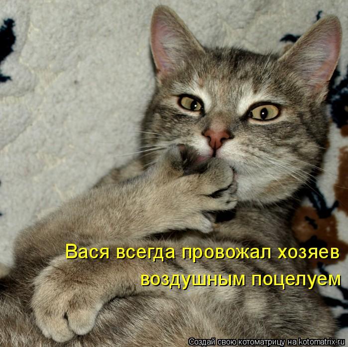 Котоматрица: Вася всегда провожал хозяев  воздушным поцелуем