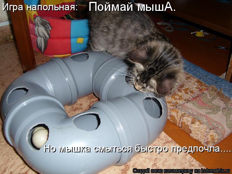 Котоматрица: Игра напольная:  Поймай мышА. Но мышка смыться быстро предпочла.....