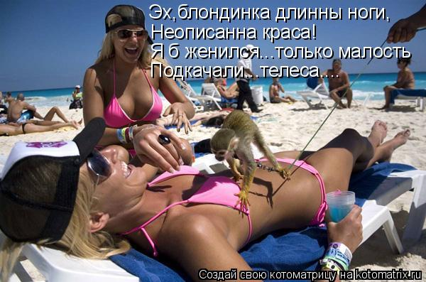 Котоматрица: Эх,блондинка длинны ноги, Неописанна краса! Я б женился...только малость Подкачали...телеса....
