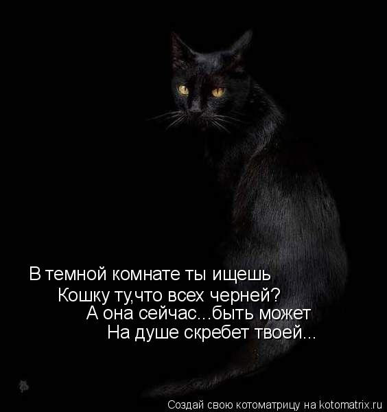 Котоматрица: В темной комнате ты ищешь Кошку ту,что всех черней? А она сейчас...быть может На душе скребет твоей...