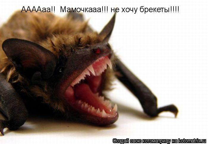 Котоматрица: ААААаа!!  Мамочкааа!!! не хочу брекеты!!!!