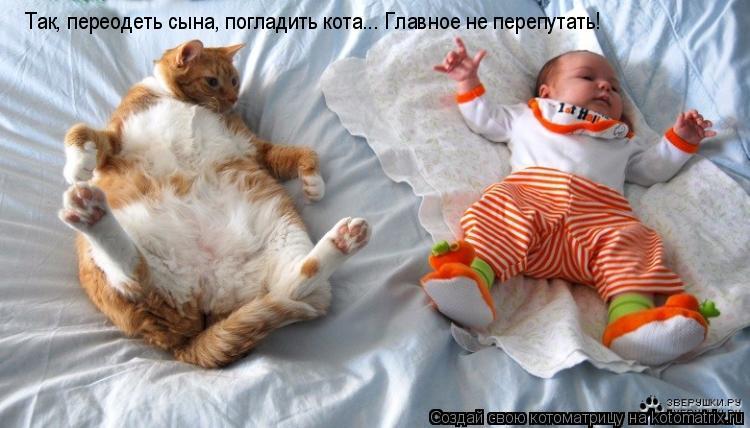 Котоматрица: Так, переодеть сына, погладить кота... Главное не перепутать!