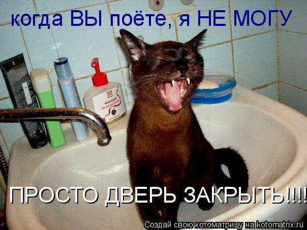 Котоматрица: когда ВЫ поёте, я НЕ МОГУ  ПРОСТО ДВЕРЬ ЗАКРЫТЬ!!!!