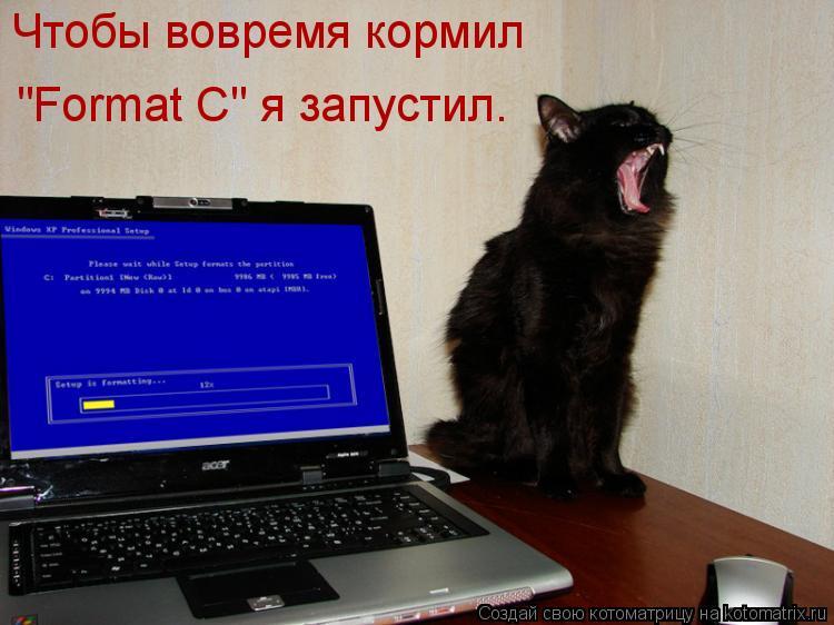 """Котоматрица: Чтобы вовремя кормил """"Format C"""" я запустил."""