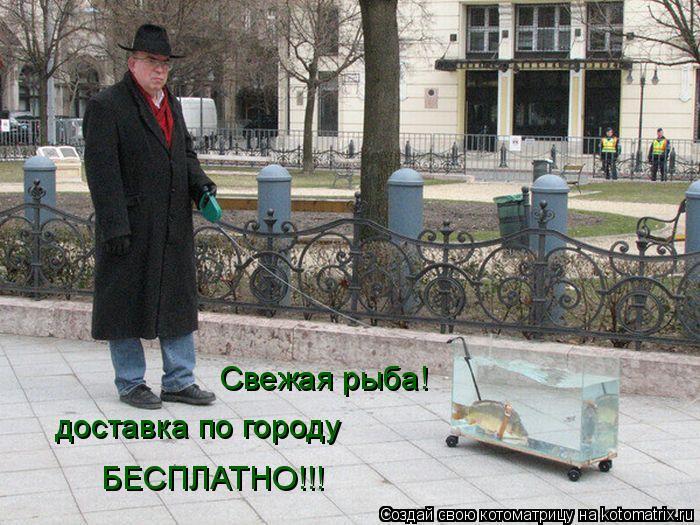 Котоматрица: доставка по городу БЕСПЛАТНО!!! Свежая рыба!