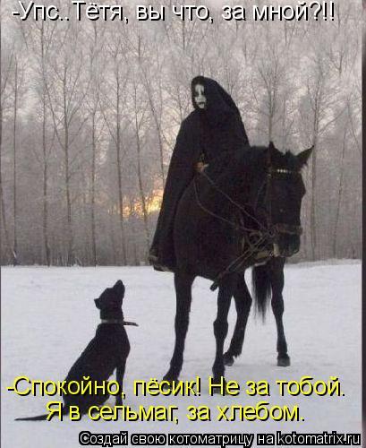 -Упс..Тётя, вы что, за мной?!!-Спокойно, пёсик! Не за тобой. Я  всельмаг, за хлебом.