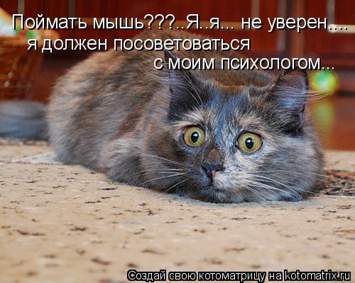Поймать мышь???..Я..я... неуверен.... я должен посоветоваться   смоим психологом...