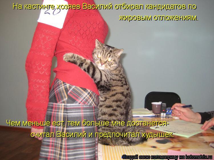 Котоматрица: На кастинге хозяев Василий отбирал кандидатов по  жировым отложениям. Чем меньше ест, тем больше мне достанется- считал Василий и предпочит