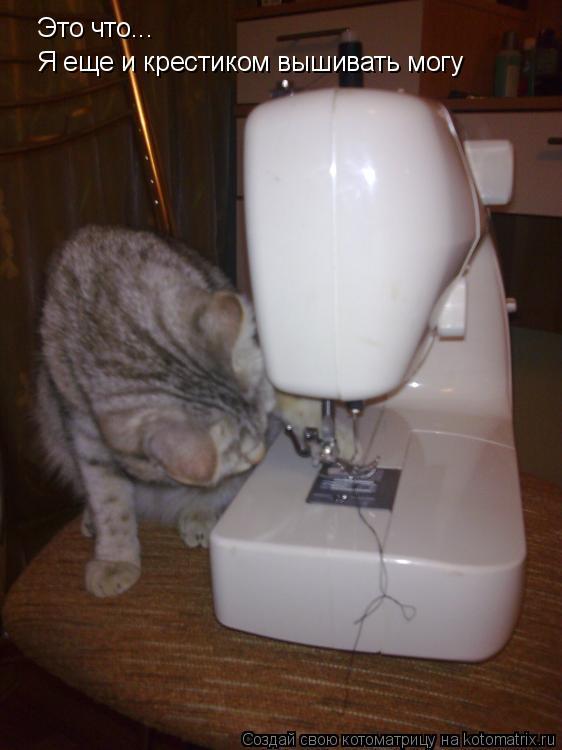 Котоматрица: Это что... Я еще и крестиком вышивать могу