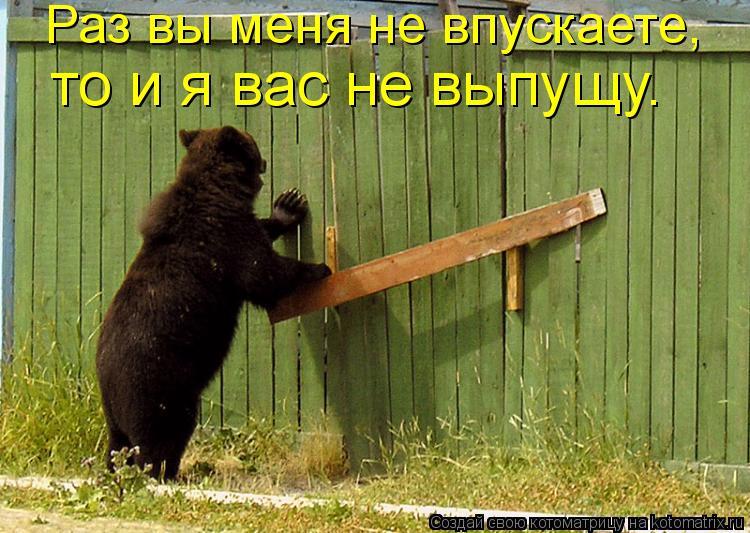Котоматрица: Раз вы меня не впускаете,  то и я вас не выпущу.