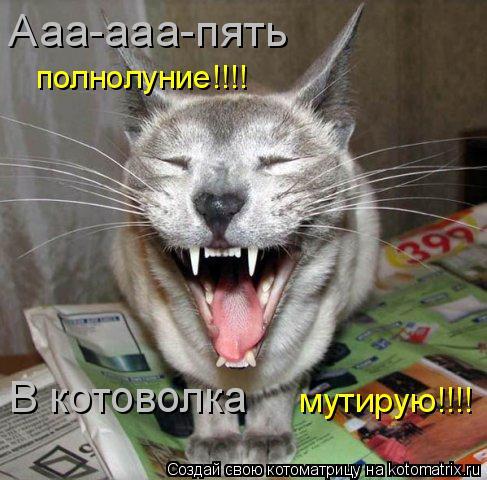Котоматрица: Ааа-ааа-пять полнолуние!!!! В котоволка мутирую!!!!