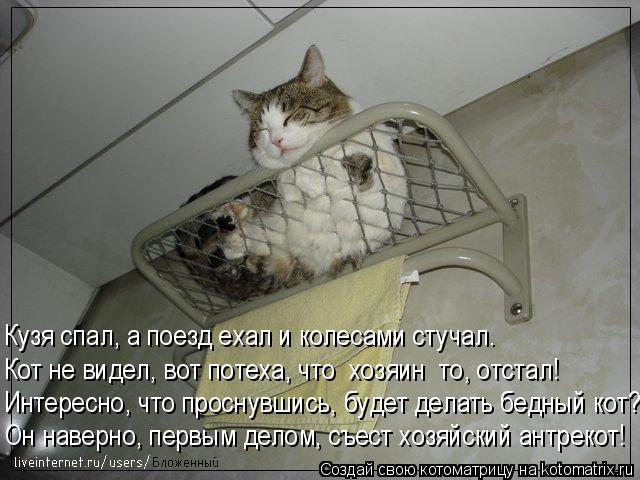 Котоматрица: Кузя спал, а поезд ехал и колесами стучал. Кот не видел, вот потеха, что  хозяин  то, отстал! Интересно, что проснувшись, будет делать бедный ко