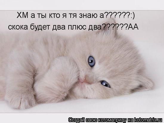 Котоматрица: ХМ а ты кто я тя знаю а??????:) скока будет два плюс два??????АА