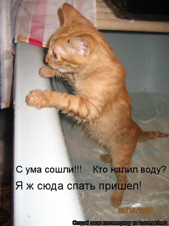 Сума  сошли!!!    Кто налил воду? Я ж сюда спать пришел!