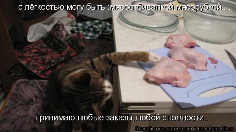 Котоматрица: с лёгкостью могу быть :мясоотбивалкой,мясорубкой.... принимаю любые заказы,любой сложности..