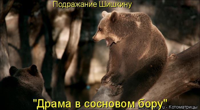 """Котоматрица: Подражание Шишкину """"Драма в сосновом бору"""""""