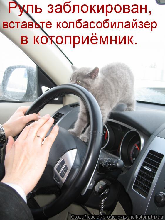 Котоматрица: Руль заблокирован,  вставьте колбасобилайзер  в котоприёмник.