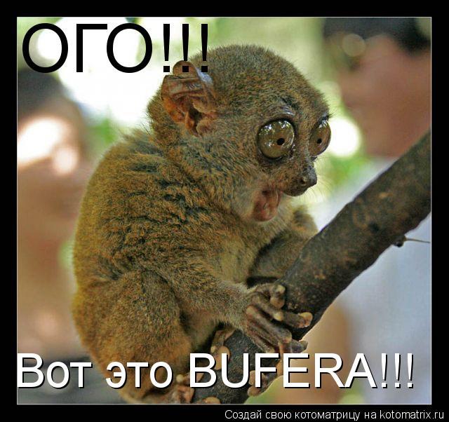 Котоматрица: ОГО!!! Вот это BUFERA!!!