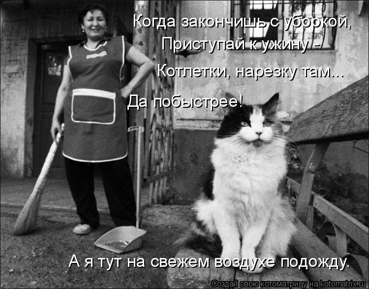 Котоматрица: Когда закончишь с уборкой, Приступай к ужину -  Котлетки, нарезку там... Да побыстрее! А я тут на свежем воздухе подожду.