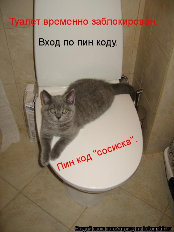 """Котоматрица: Туалет временно заблокирован. Вход по пин коду. Пин код – сосиска. Пин код """"сосиска""""."""