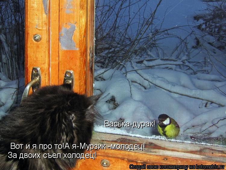 Котоматрица: Васька-дурак! Вот и я про то!А я-Мурзик -молодец! За двоих съел холодец!
