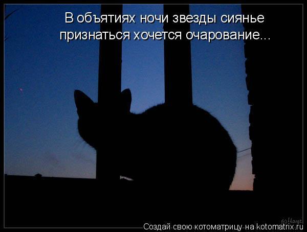Котоматрица: В объятиях ночи звезды сиянье  признаться хочется очарование...