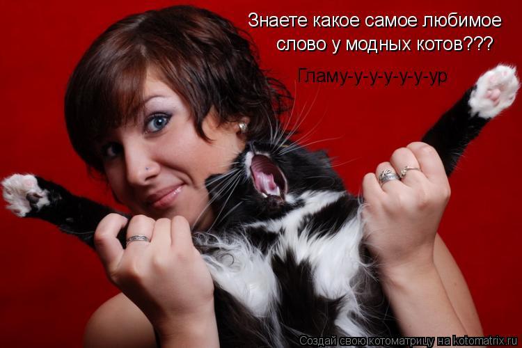 Котоматрица: Знаете какое самое любимое слово у модных котов??? Гламу-у-у-у-у-у-ур