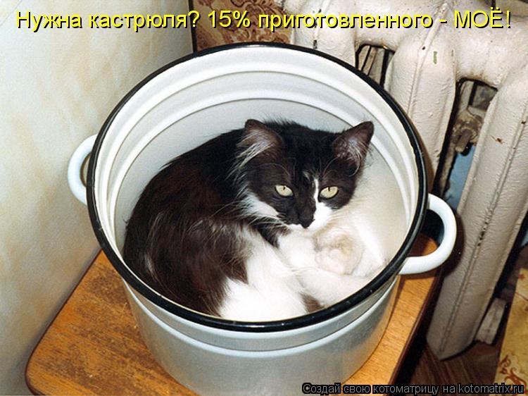 Котоматрица: Нужна кастрюля? 15% приготовленного - МОЕ! ..