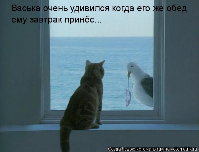 Котоматрица: Васька очень удивился когда его же обед ему завтрак принёс...