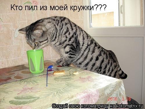 Котоматрица: Кто пил из моей кружки???