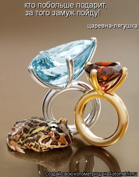 Котоматрица: кто побольше подарит, за того замуж пойду! царевна-лягушка