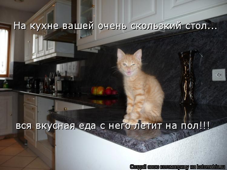 Котоматрица: На кухне вашей очень скользкий стол... вся вкусная еда с него летит на пол!!!