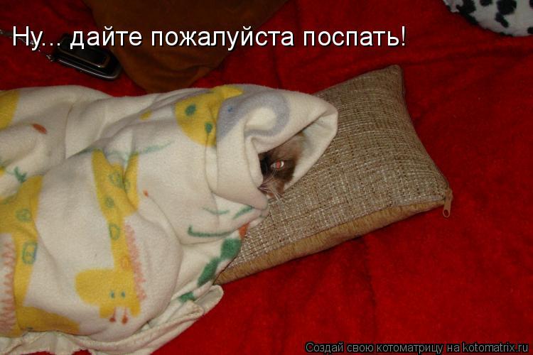 Котоматрица: Ну... дайте пожалуйста поспать!