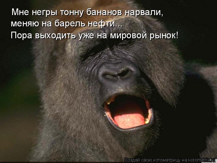 Котоматрица: Мне негры тонну бананов нарвали, меняю на барель нефти... Пора выходить уже на мировой рынок!