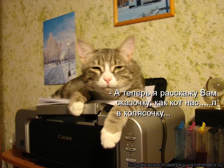 Котоматрица: - А теперь я расскажу Вам  сказочку, как кот нас.....л в колясочку...