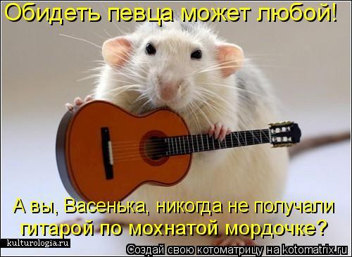 Котоматрица: Обидеть певца может любой!  А вы, Васенька, никогда не получали  гитарой по мохнатой мордочке?