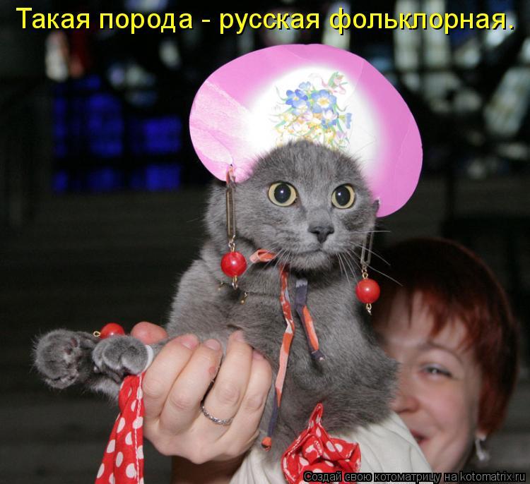 Котоматрица: Такая порода - русская фольклорная.