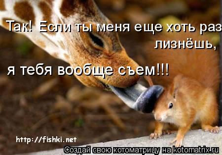 Котоматрица: Так! Если ты меня еще хоть раз лизнёшь, я тебя вообще съем!!!