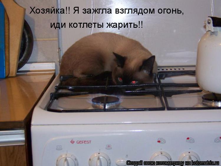 Котоматрица: Хозяйка!! Я зажгла взглядом огонь, иди котлеты жарить!!