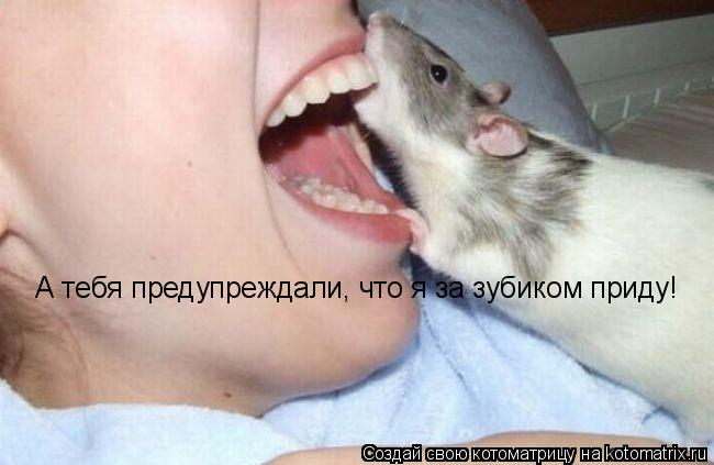 Котоматрица: А тебя предупреждали, что я за зубиком приду!