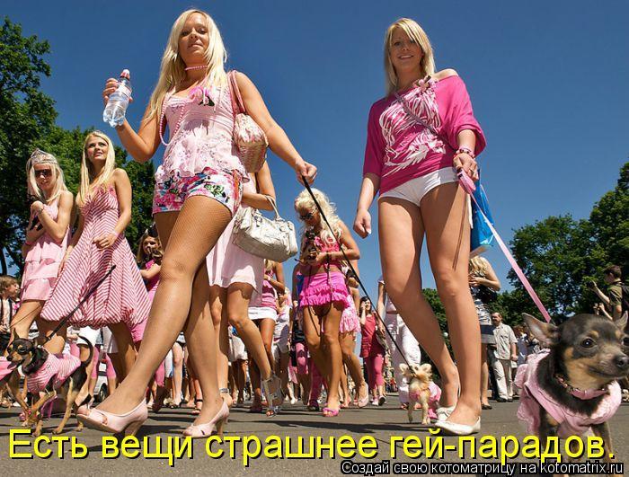 Котоматрица: Есть вещи страшнее гей-парадов.