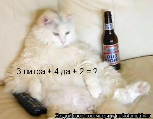 Котоматрица: 3 литра + 4 да + 2 = ?