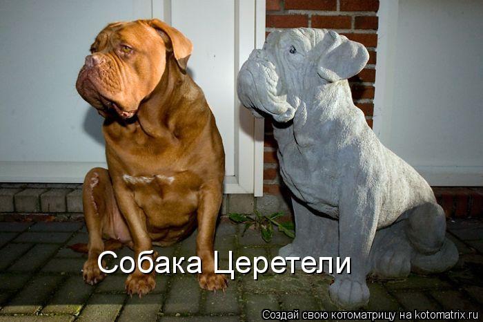 Котоматрица: Собака Церетели