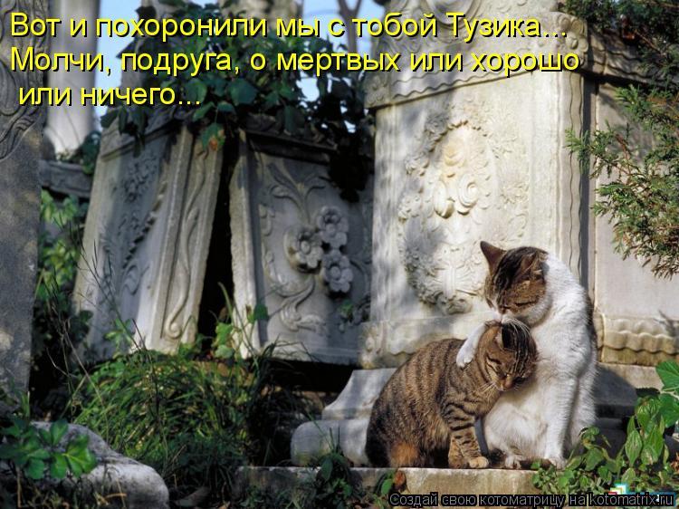 Котоматрица: Вот и похоронили мы с тобой Тузика...  Молчи, подруга, о мертвых или хорошо  или ничего...