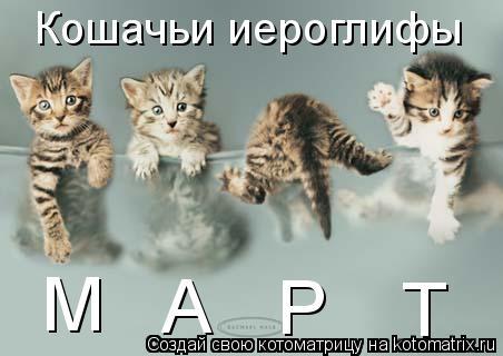 Котоматрица: Кошачьи иероглифы М Р Т А