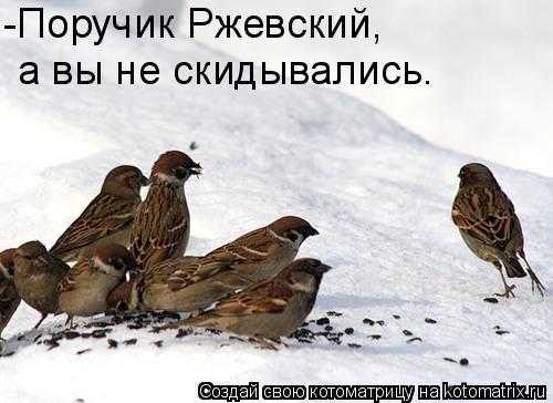 Котоматрица: -Поручик Ржевский, а вы не скидывались.