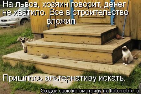 Котоматрица: На львов, хозяин говорит, денег не хватило. Все в строительство  Пришлось альтернативу искать.  вложил.
