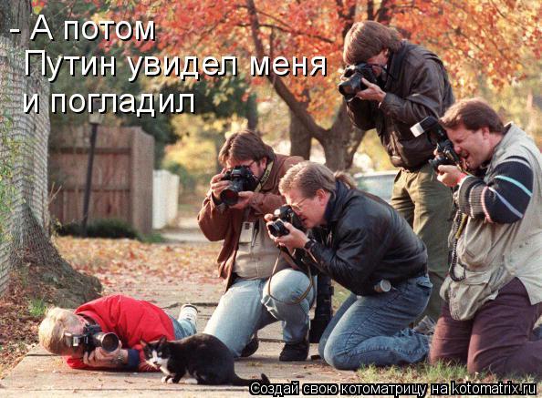 Котоматрица: - А потом  Путин увидел меня и погладил